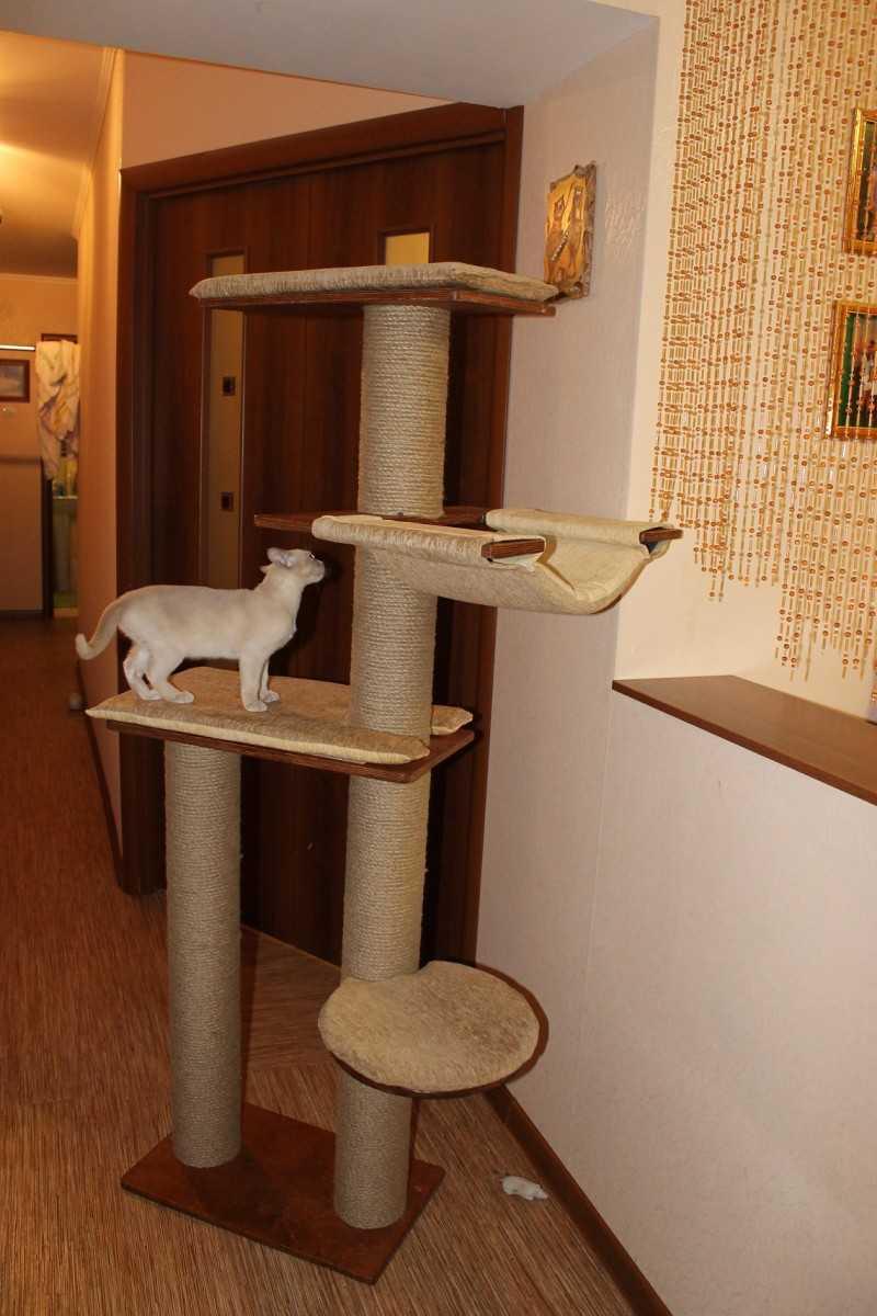 Сделать самому домик для кошки фото